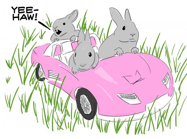 Bunnies in a Barbie Car